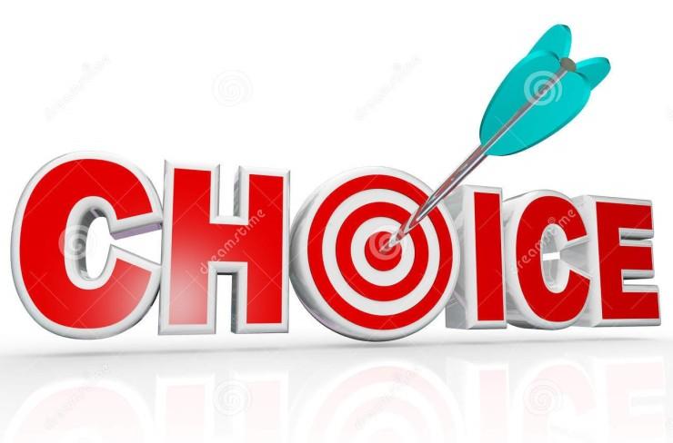 choice-arrow-target-bulls-eye-word-best-option-24936555