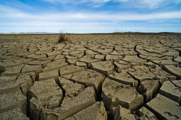 14-drought-famine